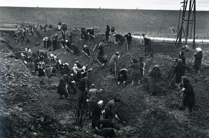 Женщины роют противотанковые рвы под Москвой. Октябрь 1941 года.