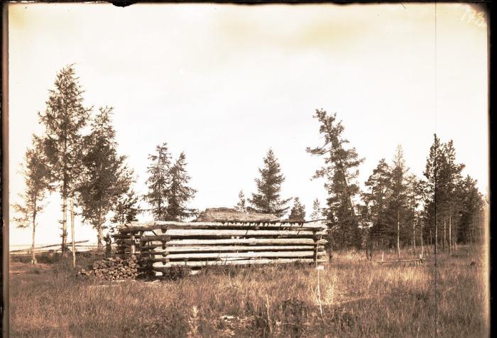 Сарай, построенный для хранения дров.