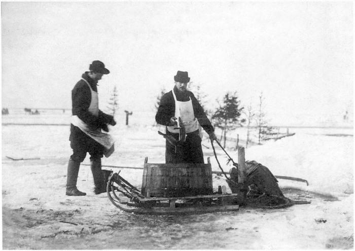 Торговцы рыбой. Россия, Архангельская область, Приморский район, 1910 год.