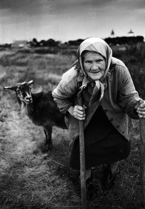 «Ты жива ещё, моя старушка?» Автор фотографии: Evgeny Kanaev.