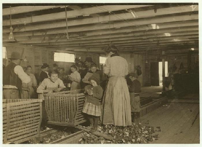 Четырехлетняя Мария, помогающая своей матери чистить устрицы. Луизиана, март 1911 года.