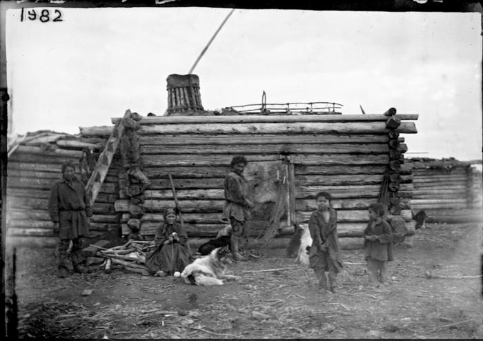 Постройка жилища обрусевшего якута.  Камчатский край, начало 20 века.
