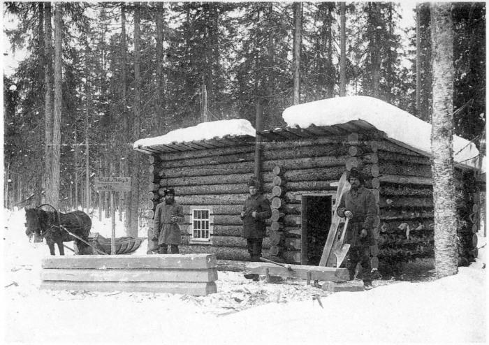 Избушка лесозаготовителей. Архангельская губерния, Холмогорский уезд, 1910 год.