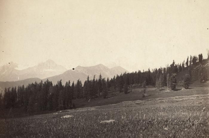 Вид, открывающийся на Катунские Альпы.