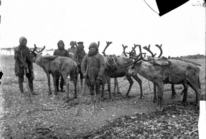 Мужчины с оленями. Камчатский край, начало 20 века.
