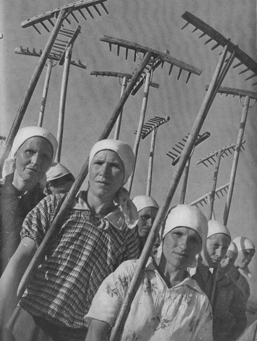 Советские колхозники во время Великой Отечественной войны. СССР, Подмосковье, 1941 год.