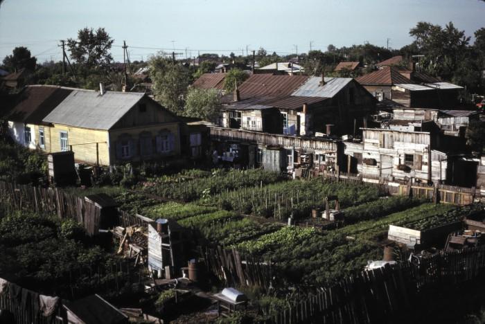 Дачи в пригороде Омска. СССР, Омск, 1979 год.
