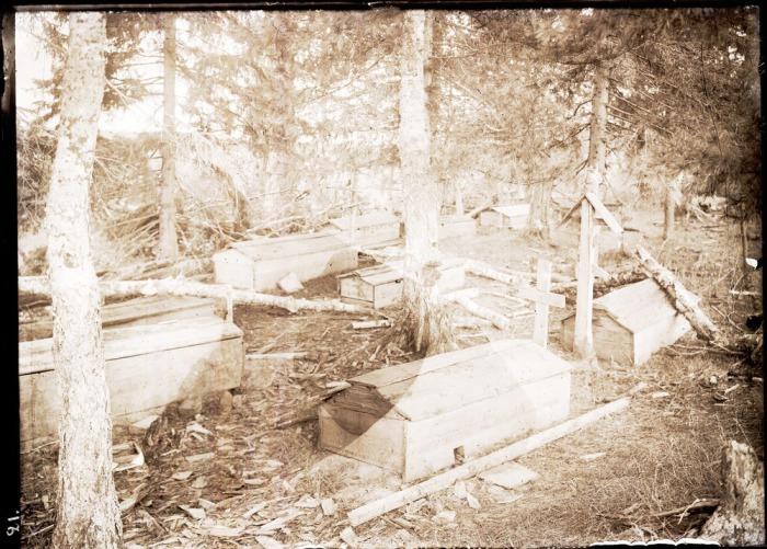 Остяцкое кладбище неподалеку от поселения.