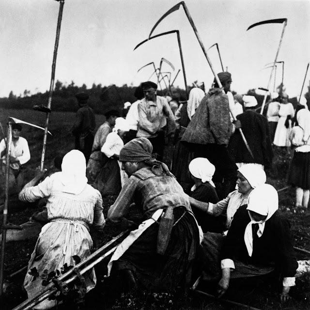 Сбор урожая. Россия, 1910-е годы.
