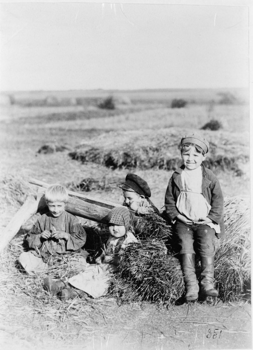 Дети гуляют в поле.