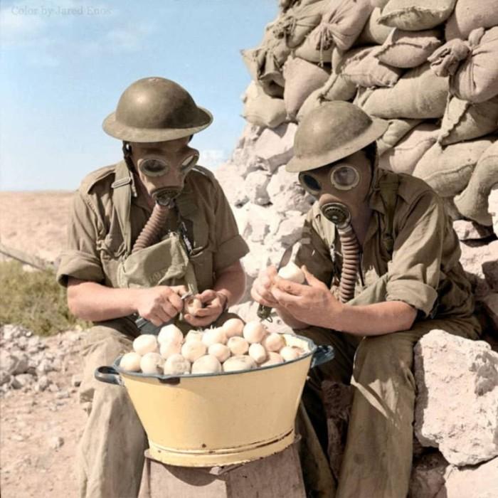 Британские солдаты чистят лук в противогазах. Тобрук, 15 октября 1941 года.
