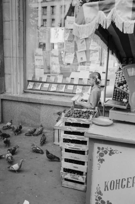 Девочка, подкармливающая голубей на Сокольнической площади. СССР, Москва, 1961 год.