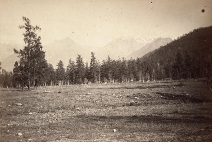 Алтайские горы недалеко от станции Алтайская.
