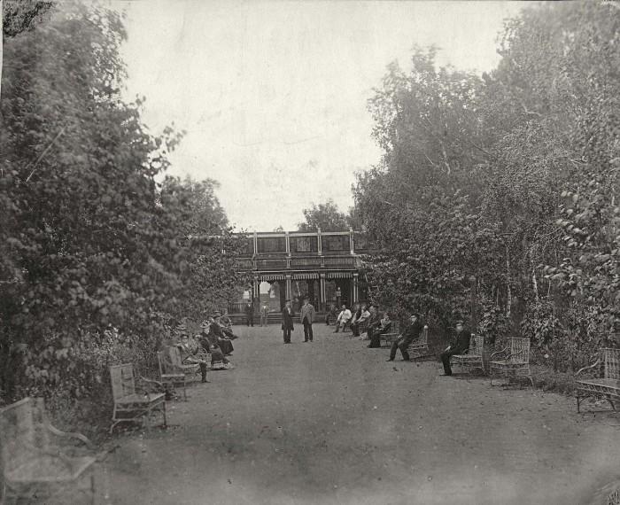 Люди гуляют на центральной аллее городского парка.