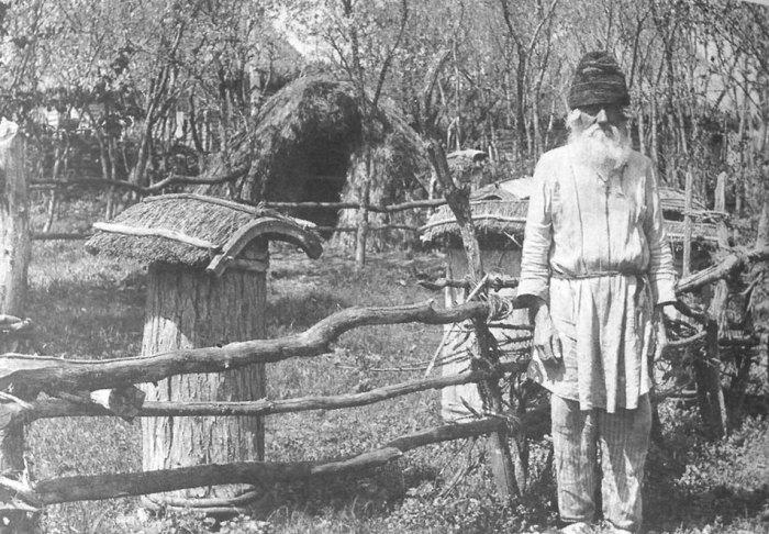 Пасечник возле пчелиных ульев. Воронежская губерния, Задонский уезд, 1908 год.