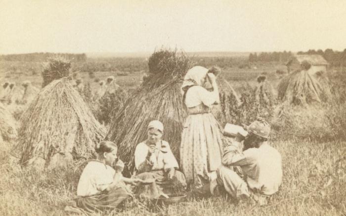 Три женщины и мужчина обедают на пшеничном поле.