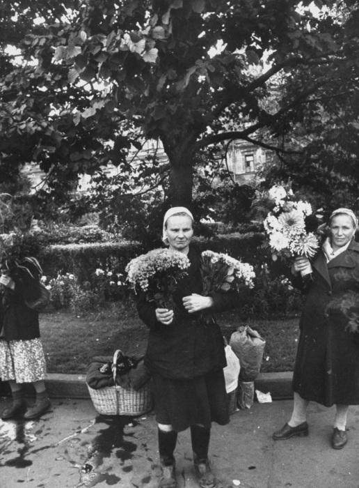 Торговля цветами на улице. СССР, Москва, 1956 год.