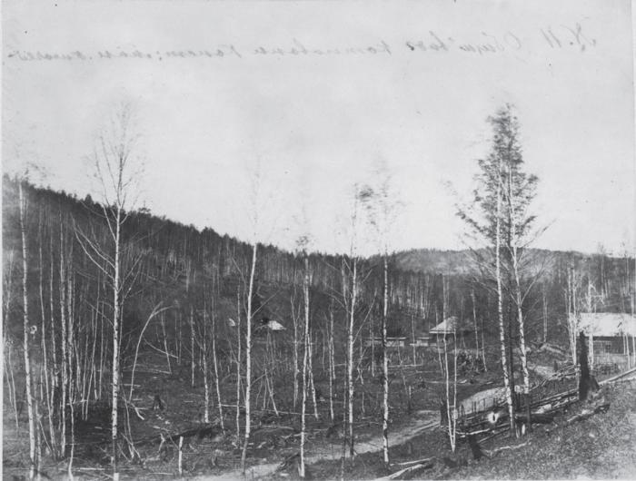Вблизи Анненских минеральных источников неподалеку от деревни Молвитино. Россия, 1880 годы.