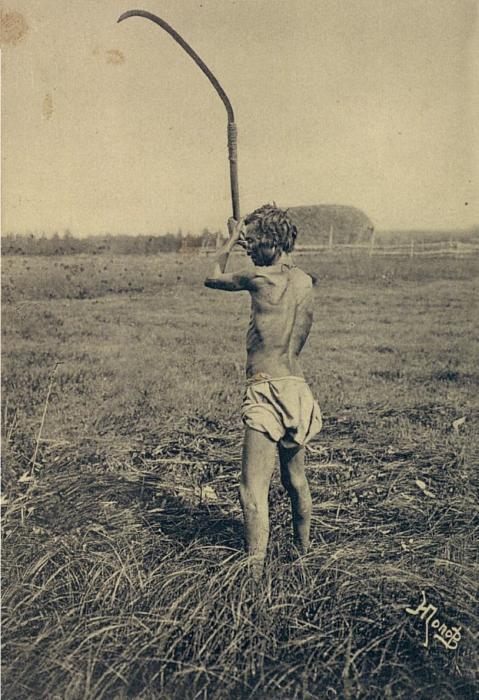Пожилой якут косящий сено. Якутская область, начало 20 века.