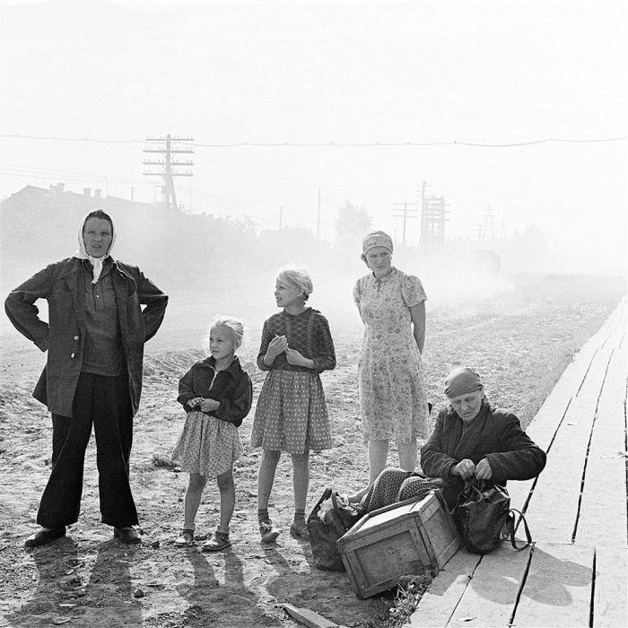 Переселенцы, 1964 год. Автор: Юрий Абрамочкин.