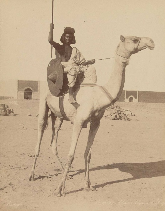 Бишаринский солдат на верблюде в 1870-го года.
