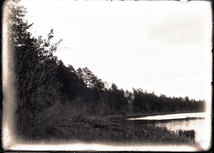 Правый берег реки Конда.