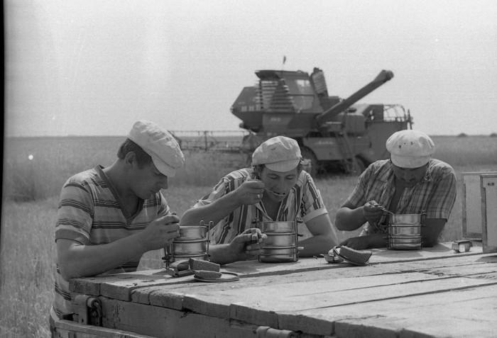 Обед комбайнеров во время в процессе жатвы, 1984 год.