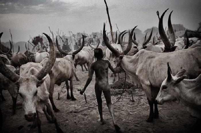Мальчик, который принадлежит к нилотской этнической группе из Южного Судана.