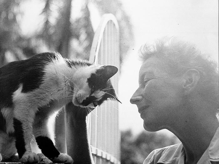 Мэри Хемингуэй играет с кошкой Бойсе. Куба, Сан-Франциско де Паула, Финка Вихия.