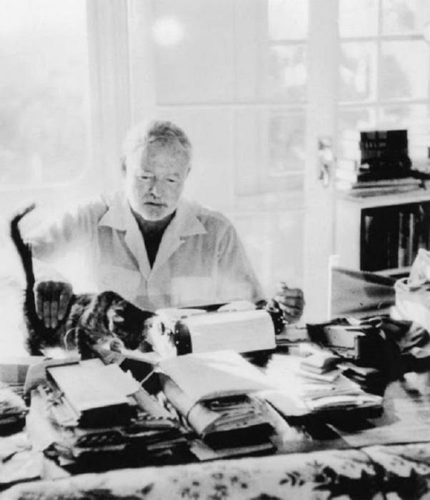 Эрнест Хемингуэй и его необыкновенная кошка.