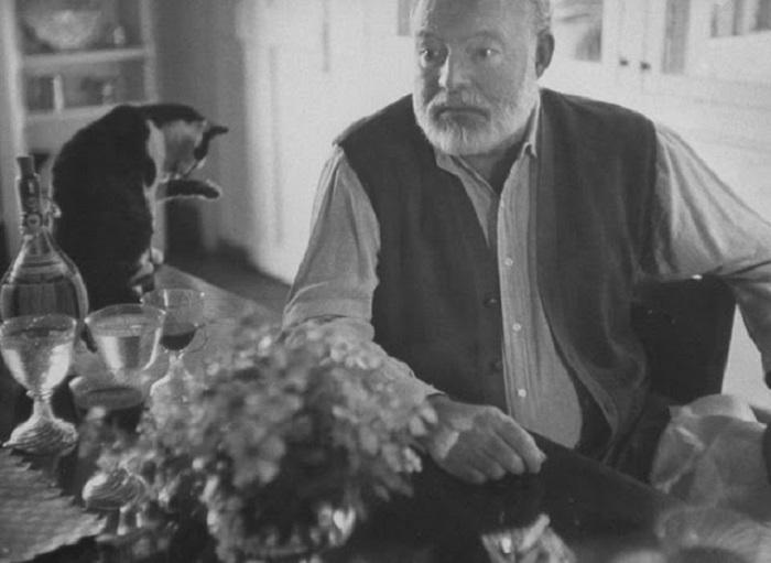 Эрнесту Хемингуэю пушистые создания не только помогали расслабиться, но и были для него источником вдохновения.