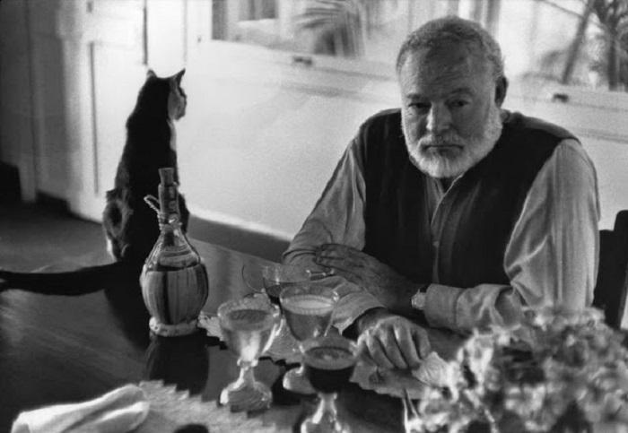 Эрнест Хемингуэй и его кот.