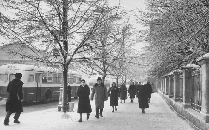 Люди, идущие по улице вдоль ограды МГУ.