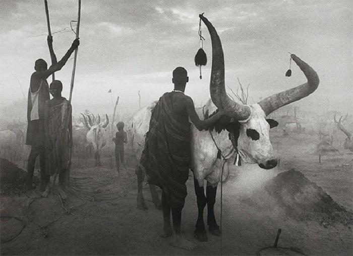 Представитель документальной фотографии и один из крупнейших фотожурналистов мира.