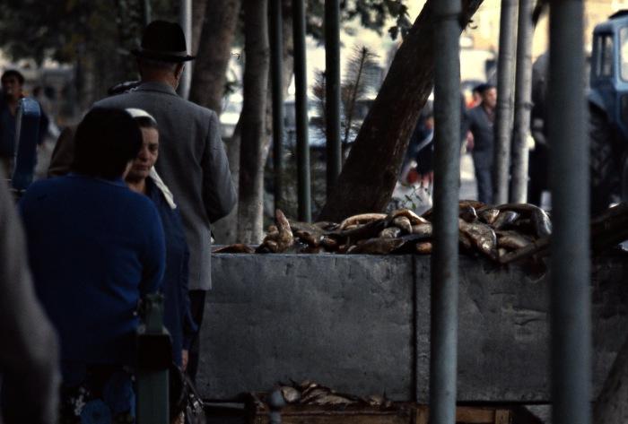Рыбный рынок на улице в центре города. СССР, Узбекистан, Ташкент, 1984 год.