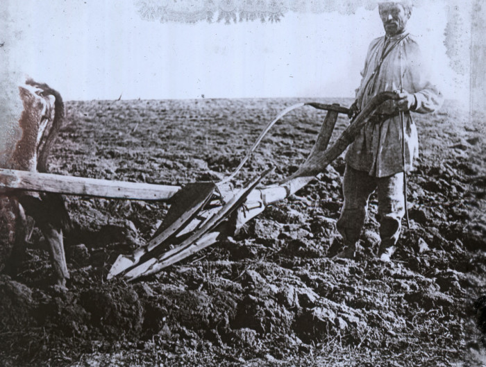 Сельский житель, который занимается возделыванием сельскохозяйственных культур.