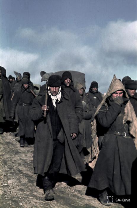 Военнопленные. Село Алакуртти, сентябрь 1941-го.