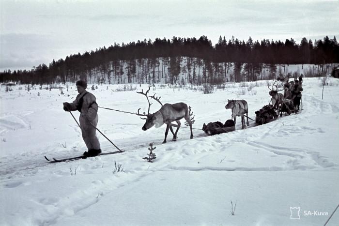 Лыжный патруль. Печенга, 1942 год.
