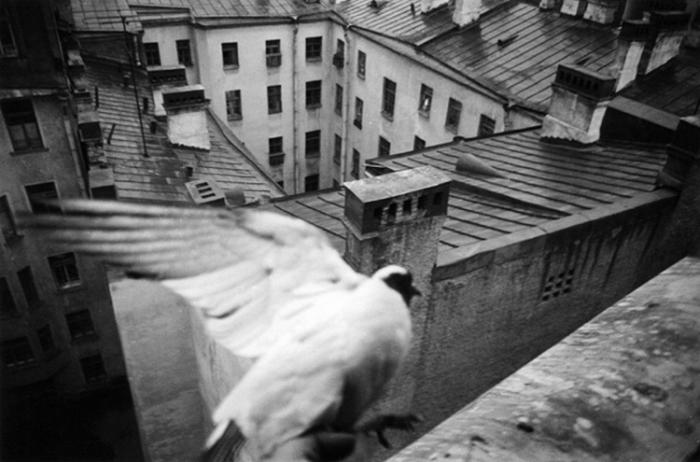 Символ свободы. СССР, Ленинград, 1975 год. Автор фотографии: Boris Smelov.