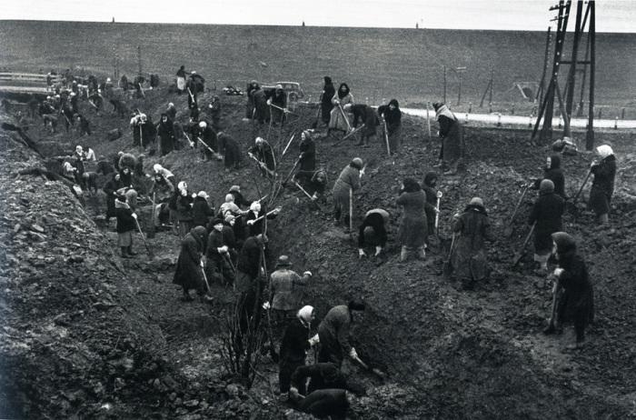 Женщины роют противотанковые рвы под Москвой, 1941 год.