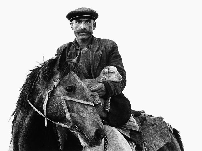 Человек, пасущий скот. СССР, 1957 год.