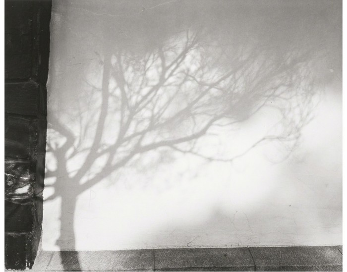 фотография, на которой тень формируют причудливый образ, 1972 год.