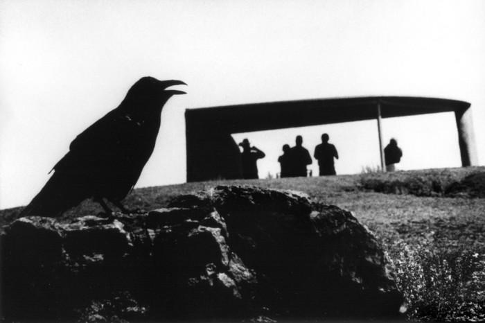 Концептуальные чёрно-белые фотографии Ренато Д'Агостина, приближенные к фантазиям.
