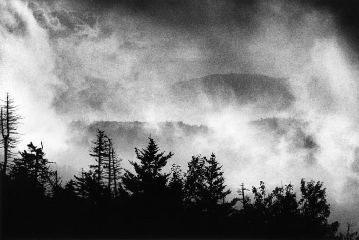 Национальный парк, расположенный в центральной части горной системы Аппалачи. США, 2015 год.