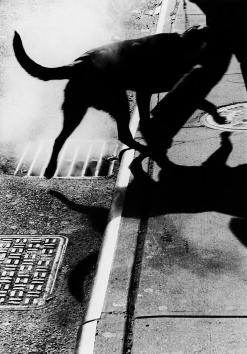 Городская атмосфера. США, Нью-Йорк, 2005 год.
