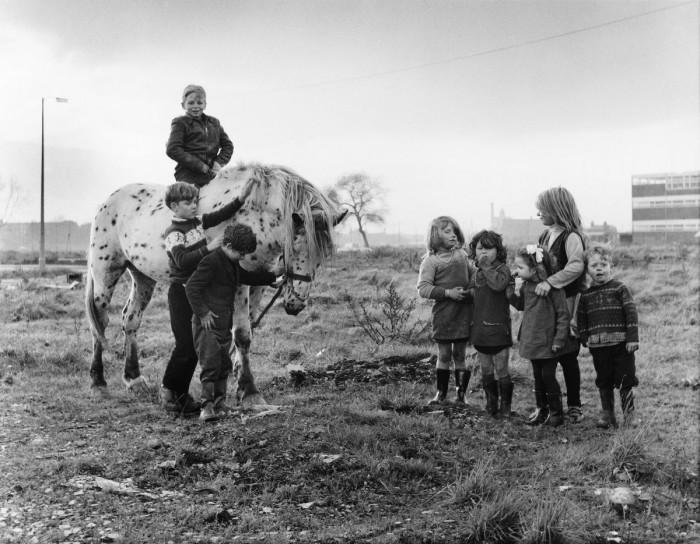 Катание на лошади. Англия, Манчестер, 1967 год.