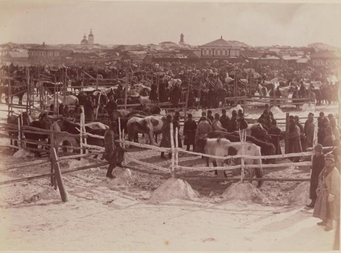 Зимняя конная ярмарка в Кургане. Россия, 1895 год.