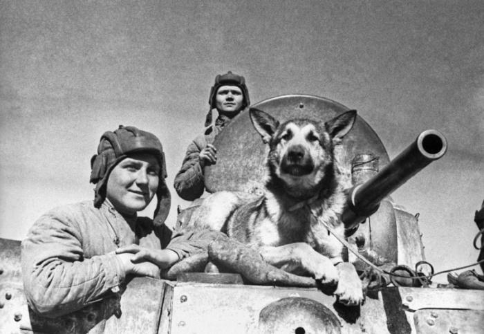 Старший сержант Эндрексон, сержант Ершаков и овчарка Джульбарс.