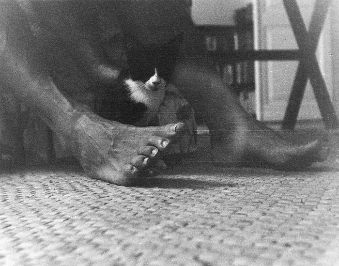 Котенок сидит у ног Эрнеста Хемингуэя на Финка Вихия.