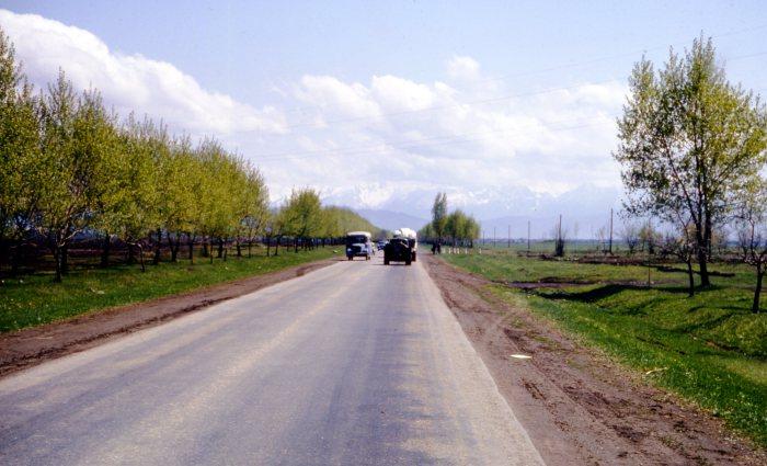 Трасса, ведущая в горные районы Грузии.